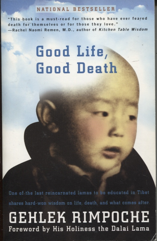Image for Good Life, Good Death