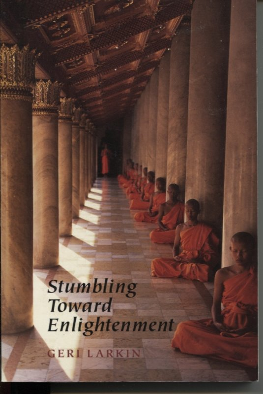 Image for STUMBLING TOWARD ENLIGHTENMENT